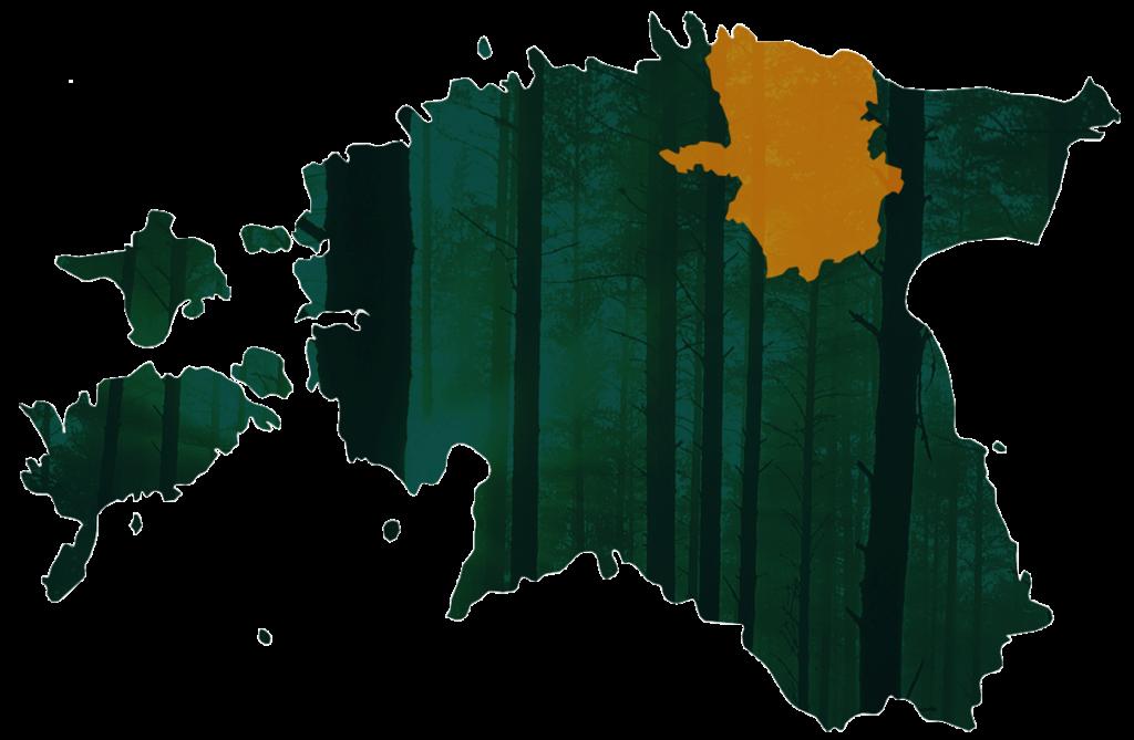 Rakvere Metsaühistu piirkond